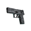 P250 | Facets <br>(Factory New)