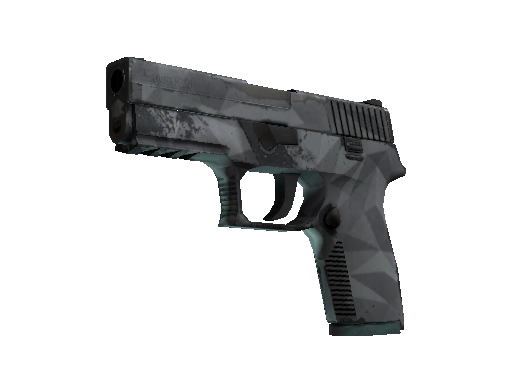 P250 | Facets Field-Tested