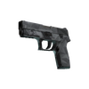 P250 | Facets <br>(Field-Tested)