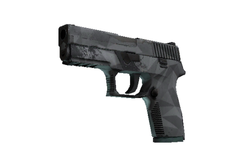 P250 | Facets (Well-Worn) Prices