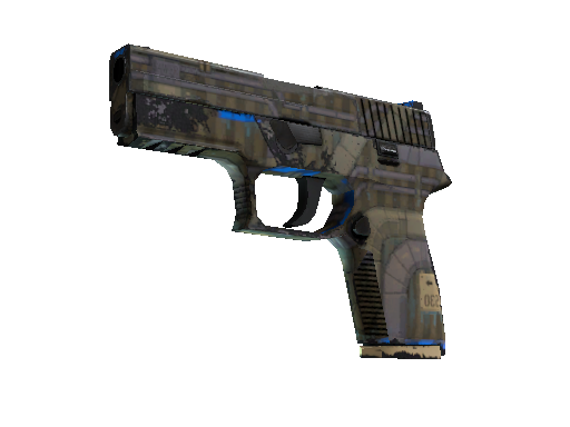 P250 | Exchanger Well-Worn