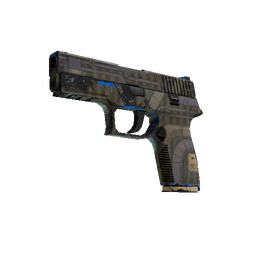 P250 | Exchanger (Field-Tested)