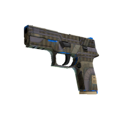 P250 | Exchanger (Minimal Wear)