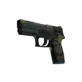 P250 | Boreal Forest <br>(Battle-Scarred)