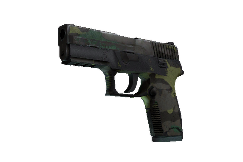 Buy P250 | Boreal Forest (Battle-Scarred)