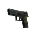 P250 | Boreal Forest (Battle-Scarred)