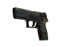 P250   Boreal Forest (Battle-Scarred)