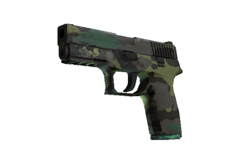 P250 | Boreal Forest (Well-Worn) Prices