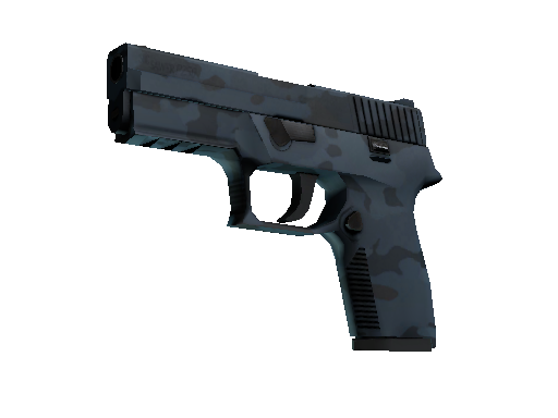 P250 | Forest Night