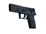 P250 Forest Night