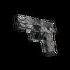 P250 | Gunsmoke <br>(Field-Tested)