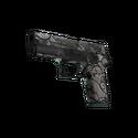 P250 | Gunsmoke