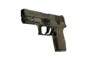 P250 Sand Dune Field Tested