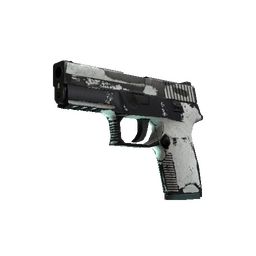 P250 | Whiteout (Battle-Scarred)