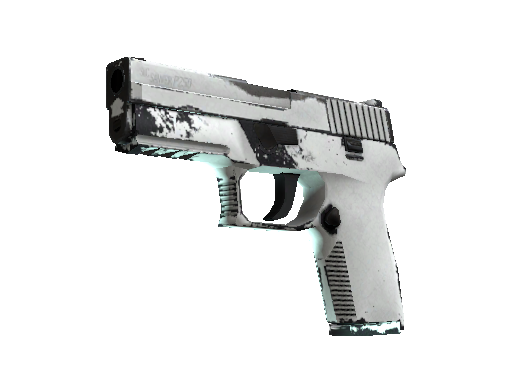 P250 | Whiteout Well-Worn