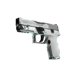 P250 | Whiteout (Well-Worn)
