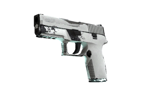 Buy P250 | Whiteout (Field-Tested)