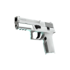P250 | Whiteout (Factory New)