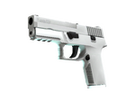 P250 Whiteout