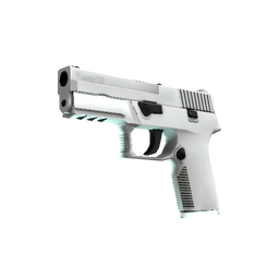 P250 | Whiteout (Minimal Wear)