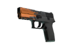 P250 | Splash (Factory New)