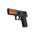 StatTrak™ P250 | Splash <br>(Minimal Wear)