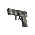 P250 | Bone Mask <br>(Factory New)