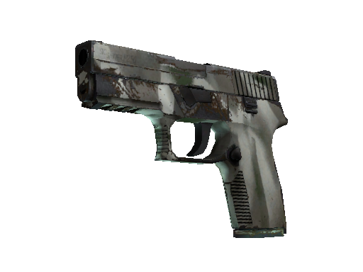 P250 | Bone Mask Field-Tested