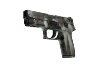 P250 | Bone Mask (Field-Tested)