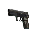 P250 | Bone Mask <br>(Battle-Scarred)