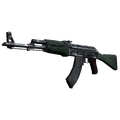 AK-47 | First Class <br>(Well-Worn)