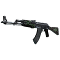 AK-47 | Emerald Pinstripe <br>(Well-Worn)