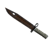 ★ Bayonet | Rust Coat <br>(Battle-Scarred)