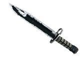 ★ Bayonet | Night (Battle-Scarred)