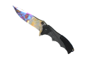 ★ Nomad Knife | Case Hardened