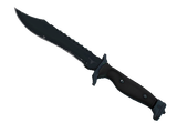 ★ Bowie Knife | Night (Field-Tested)