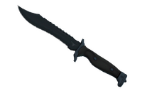★ Bowie Knife | Night (Factory New)
