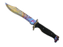 Skin Bowie Knife | Case Hardened