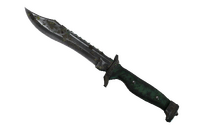 ★ Bowie Knife | Boreal Forest (Battle-Scarred)
