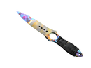 ★ Skeleton Knife | Case Hardened
