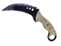 ★ Talon Knife | Doppler