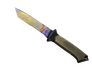 Skin ★ Ursus Knife | Case Hardened