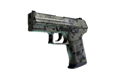 P2000 | Granite Marbleized (Well-Worn) Prices