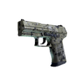 P2000 | Granite Marbleized <br>(Factory New)