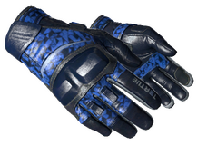 Skin ★ Moto Gloves | Polygon