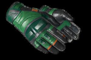 Moto Gloves Turtle Minimal Wear
