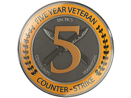 5 Year Veteran Coin
