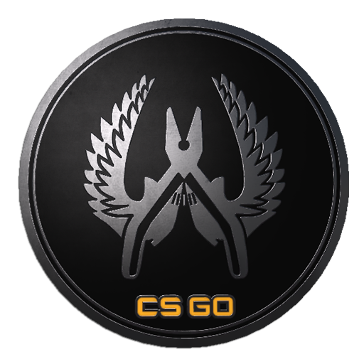Guardian Elite Pin