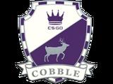Cobblestone Pin