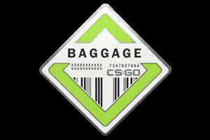 Baggage Pin